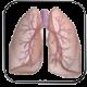 منابع تخصصی مجاری تنفسی