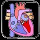 منابع تخصصی قلب و عروق