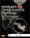 دانلود کتاب الکترونیکی فیزیولوژی، اکلوژن و آناتومی دندان ویلر- ِWheeler's Dental Anatomy, Physiology and Occlusion, 10 ED(رایگان)