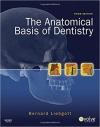 کتاب الکترونیکی آناتومی پایه برای دندانپزشکی The Anatomical Basis of Dentistry 3ED