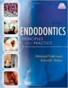 دانلود کتاب الکترونیکی  Endodontics Principles and Practice, 4e